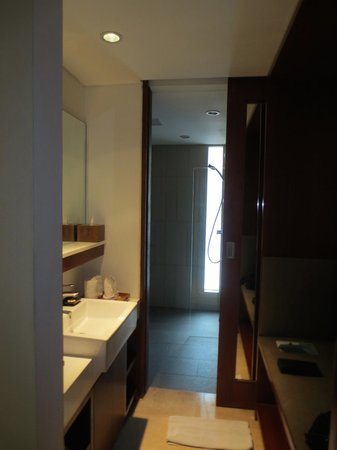 The Magani Hotel and Spa: bathroom view from entrance