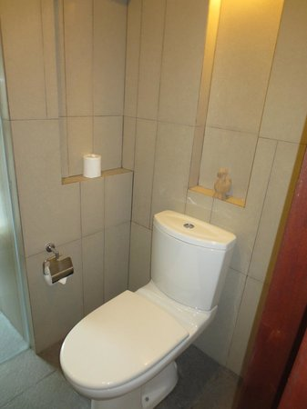 The Magani Hotel and Spa: toilet