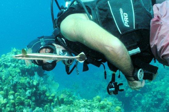 Infinity Divers Aqua Center : Adam - MVI (Most Valuable Instructor)