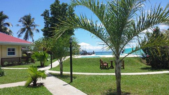 Caimito Beach Hotel : Hotel grounds