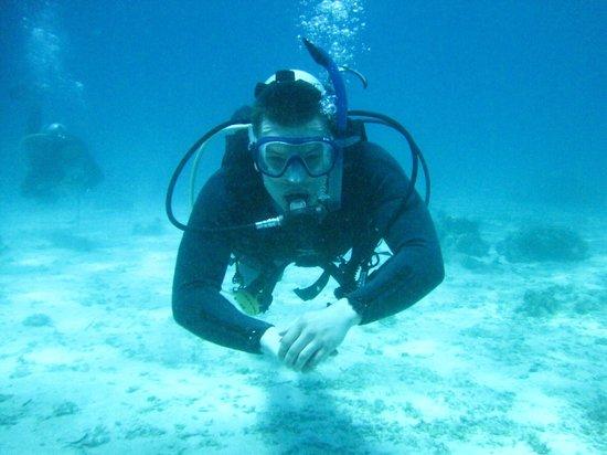 Philippine Fun Divers, Inc.: Harry's swim, containing his excitement, too.