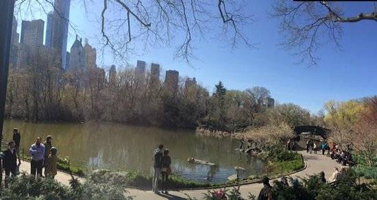 Central Park Sightseeing : Central Park