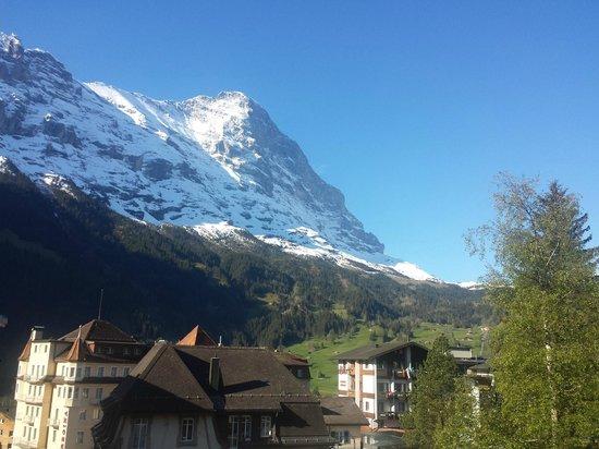 Hotel Restaurant Alpina Grindelwald: Vue sur la face Nord de l'Eiger depuis le jardin