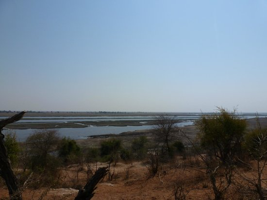 Sanctuary Chobe Chilwero : View from the camp