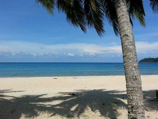 1511 Coconut Grove: Marvelous seaview