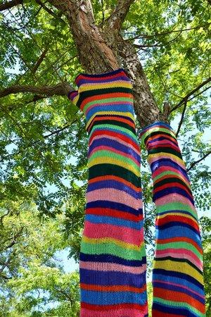 Bed & Breakfast La Valle Talamello : guerrilla knitting