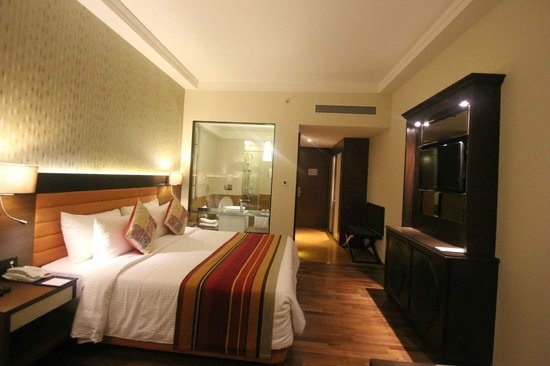 Balaji Sarovar Premier : Deluxe Room