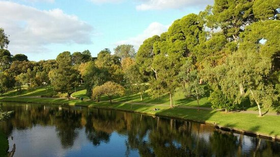 River Torrens Linear Park Trail: Nature at its best 2
