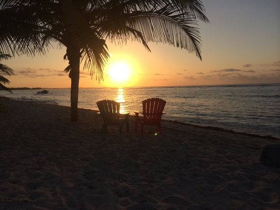 Turtle Nest Inn: Sunrise