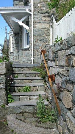 Frondirion steps