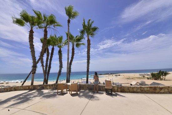 Hilton Los Cabos Beach & Golf Resort : Vista da Praia