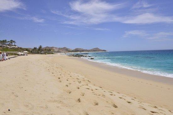 Hilton Los Cabos Beach & Golf Resort : Praia