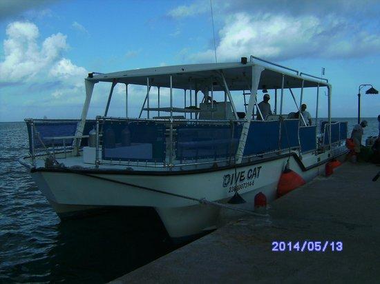 Scuba Club Cozumel: Un barco pequenyo para grupos reducidos (los hay grandes)