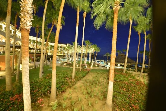 Hilton Los Cabos Beach & Golf Resort : Vista do Quarto