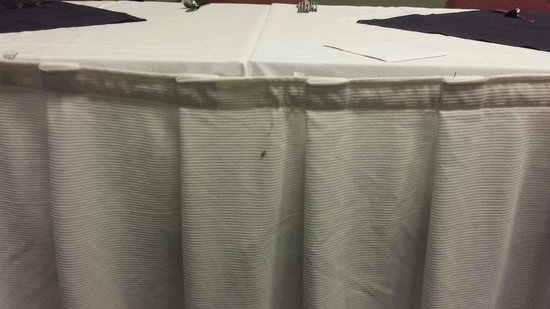 Quality Inn Conference Center: stained table skirt