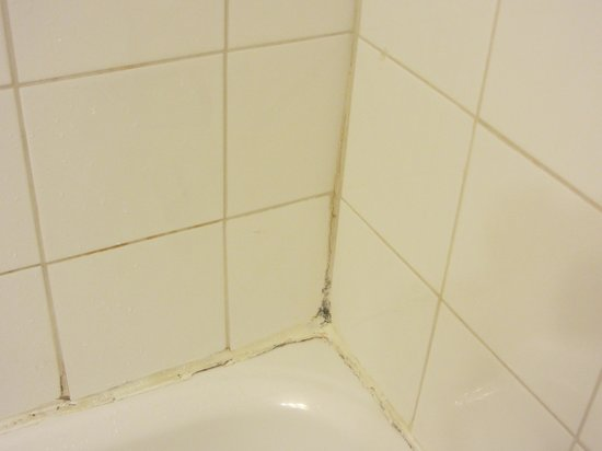 Quality Hotel Midtown : Mold around bathtub