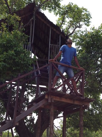 Jetwing Vil Uyana : TREE HOUSE