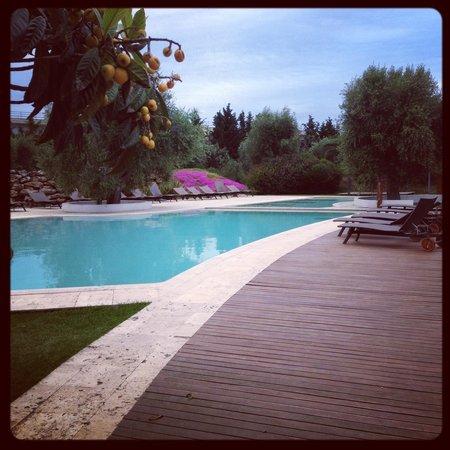 Terranobile Metaresort: The pool area, complete with swim up bar.