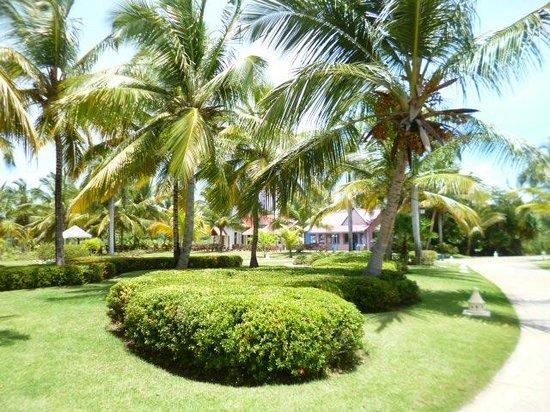 Tropical Princess Beach Resort & Spa : Hotelgelände