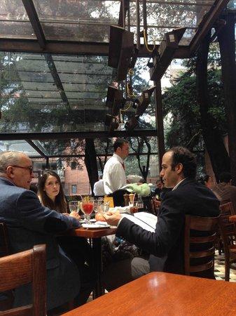 Harry Sasson: enclosed patio areas
