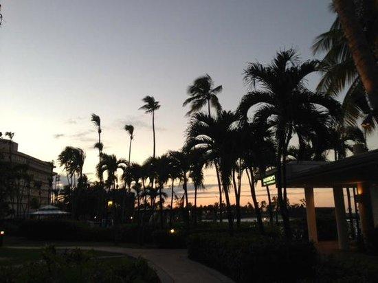 Caribe Hilton San Juan: Hotel grounds at sunset