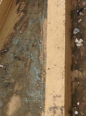 Caribe Hilton San Juan: Closeup of the dirty rooftop (and ashtray apparently) that obstructed our oceanview