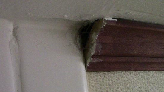 Crowne Plaza  Resort Asheville : where the crown molding ended in the bathroom near the shower.