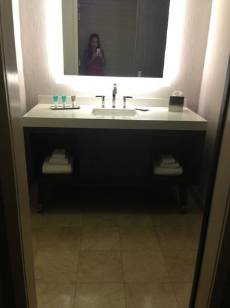 Hyatt Centric Chicago Magnificent Mile: Loved the bathroom!