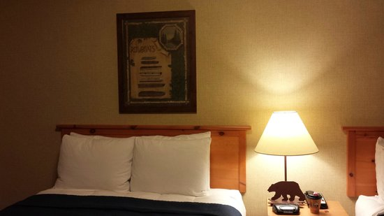 Stoney Creek Hotel & Conference Center - Moline: Queen Bed #1