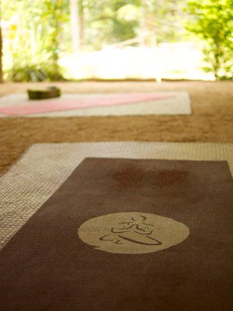 Grounded Koh Tao's Wellbeing Centre: the mat