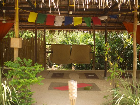 Grounded Koh Tao's Wellbeing Center: atmospheric