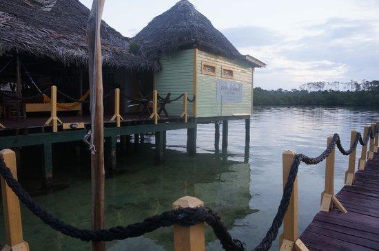 Punta Caracol Acqua Lodge: Vista da recepção