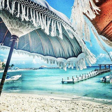 Indigo Beach Playa Del Carmen Restaurant Reviews Phone Number Photos Tripadvisor