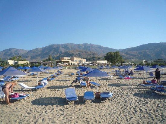 Pilot Beach Resort: Plage deserte en fin de journée, transats très espacés
