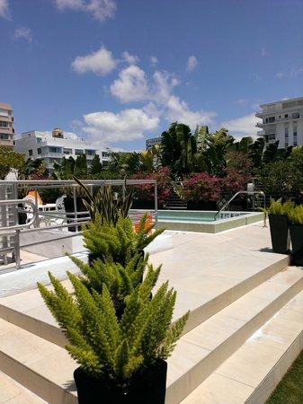 Sanctuary South Beach: sundeck/pool