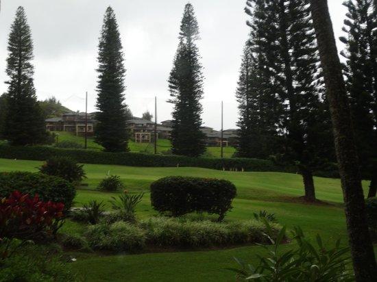 The Ritz-Carlton, Kapalua: Hotel grounds