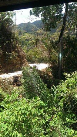 EDENVA El Eden de Vallarta : View
