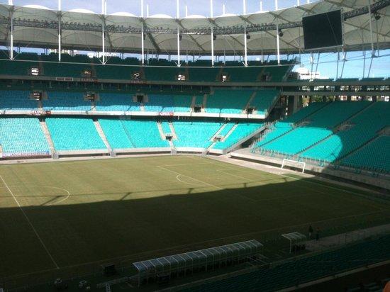 Itaipava Arena Fonte Nova : A Arena