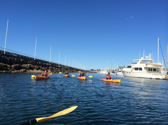 Paddle Sports Center : Enjoying the harbor views