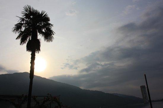 Hotel Due Palme: Vue de la chambre