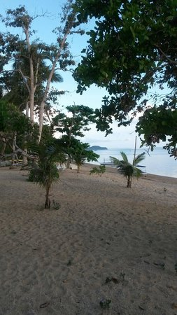 Cashew Grove Beach Resort : View from porch