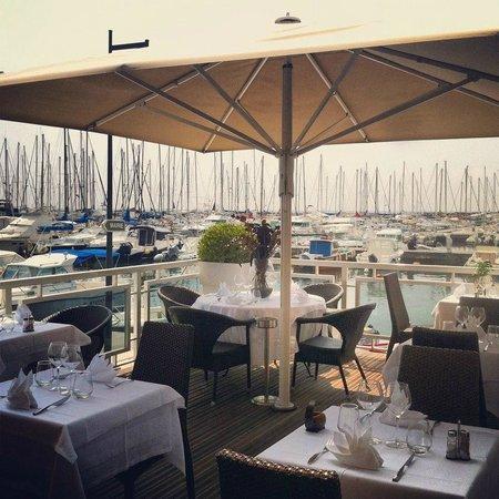 Santa-Maria-Poggio, Frankrike: Vue de la terrasse panoramique