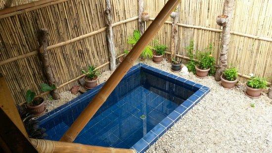 Cashew Grove Beach Resort : Pool room B02