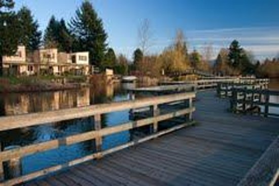 Abbotsford Hotel: Bring your walking shoes, and take an hour stroll around our picturesque lake in the heart of th