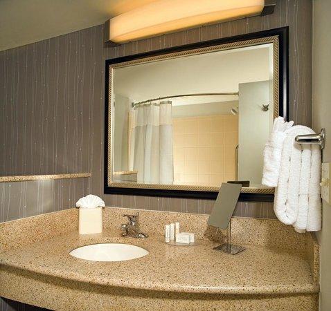 Courtyard Washington Capitol Hill/Navy Yard: Guest Room Bathroom Vanity