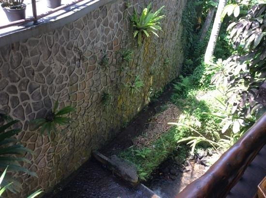 Junjungan Ubud Hotel and Spa: the river in the middle