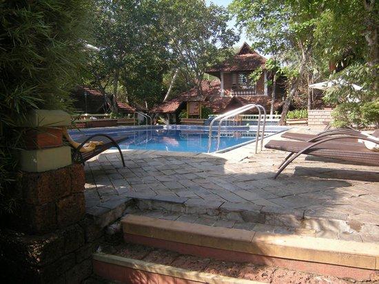 Punnamada Resort: Pool Area