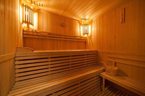 Willa Pod Losiem: Sauna