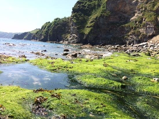 Porthpean Beach : the coves
