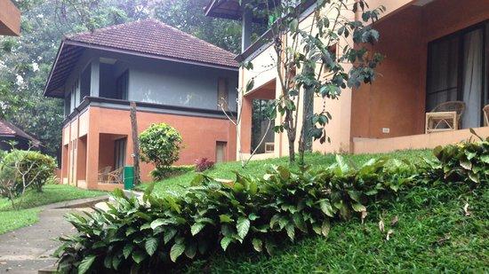 ABAD Green Forest Resort: Cottages